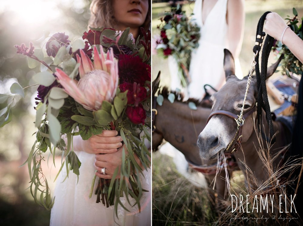 the cedars ranch, libby cole creations, saint isabel bridal, melange bridal, kirk root designs, ears with beers, burros, donkeys, moody rich delicate marfa inspired burgundy maroon black white spring styled wedding photo shoot {dreamy elk photography and design}