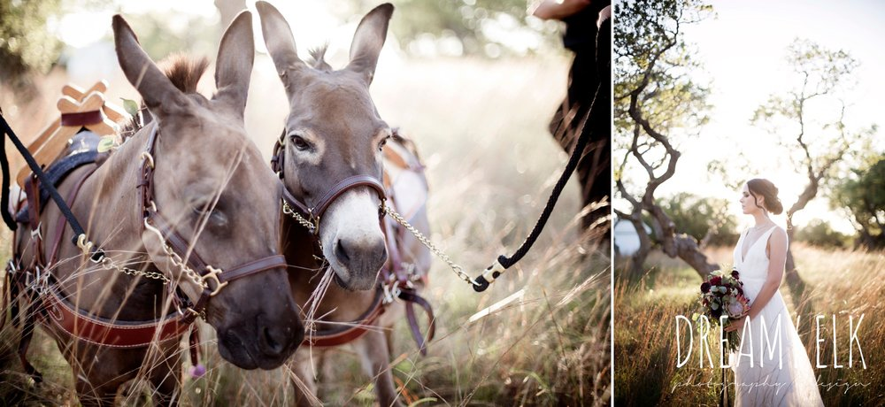 the cedars ranch, libby cole creations, saint isabel bridal, melange bridal, glam gone good, ears with beers, moody rich delicate marfa inspired burgundy maroon black white spring styled wedding photo shoot {dreamy elk photography and design}