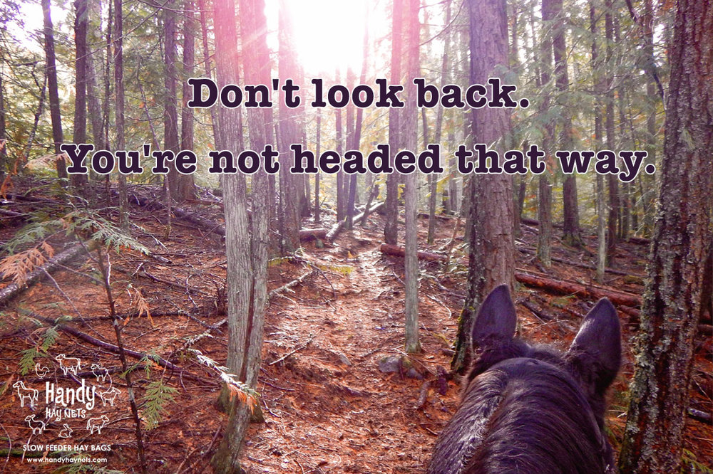 Don't look back. You're not headed that way.