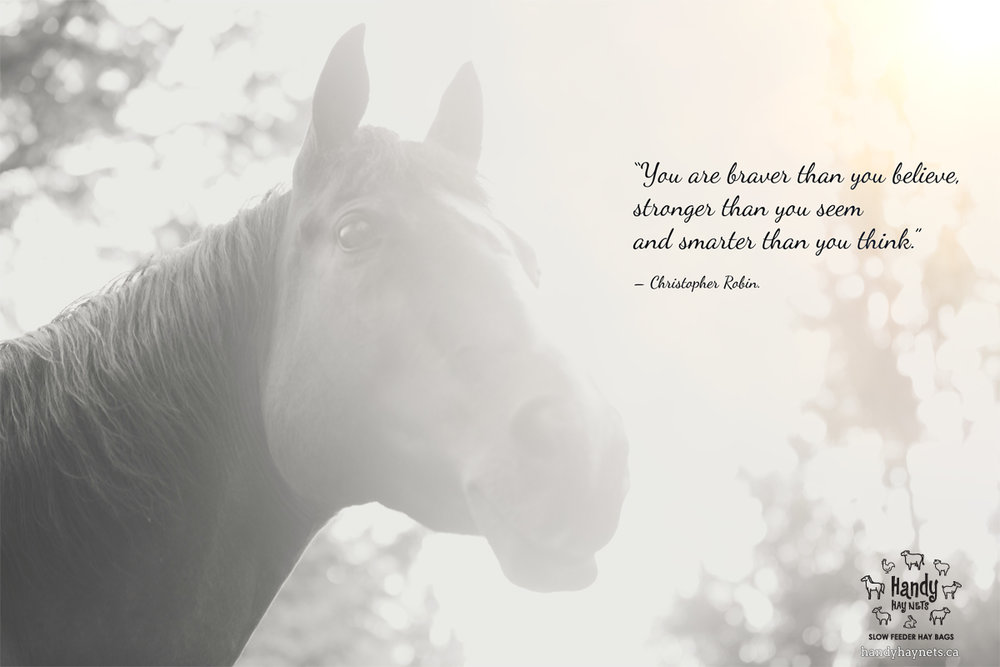 """""""You are braver than you believe, stronger than you seem and smarter than you think."""""""