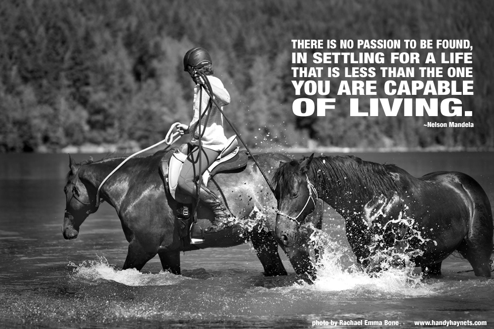 """There is no passion to be found in settling for a life that is less than the one you are capable of living."""