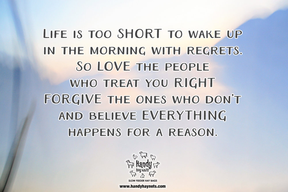 Life Is Too Short To Wake Up In The Morning With Regrets Handy