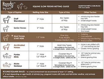 Equine - Slow Feeder Netting GuideGuide pour les équidés