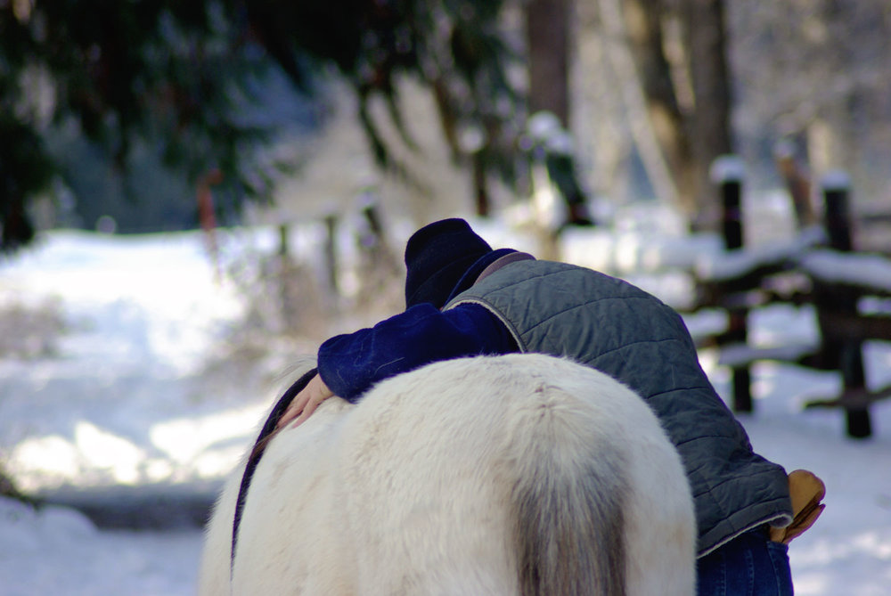 horse-hug.jpg