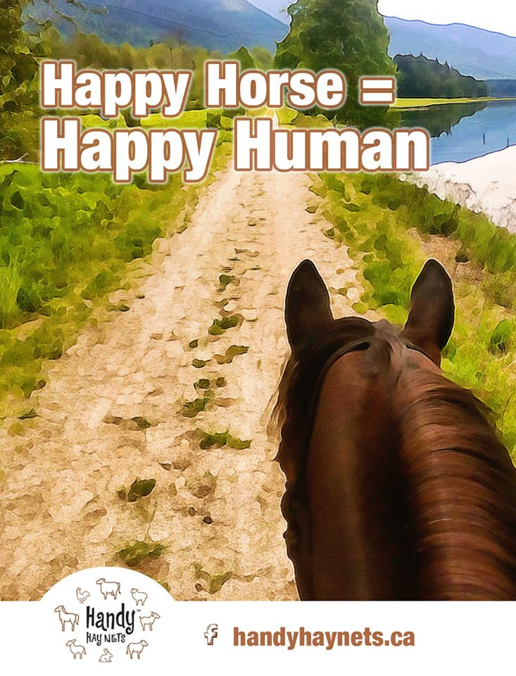 happy horse equals happy human.jpg