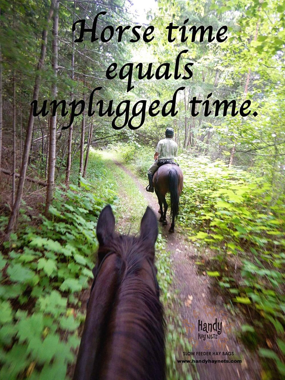 horse-time-equals-unplugged-time.jpg