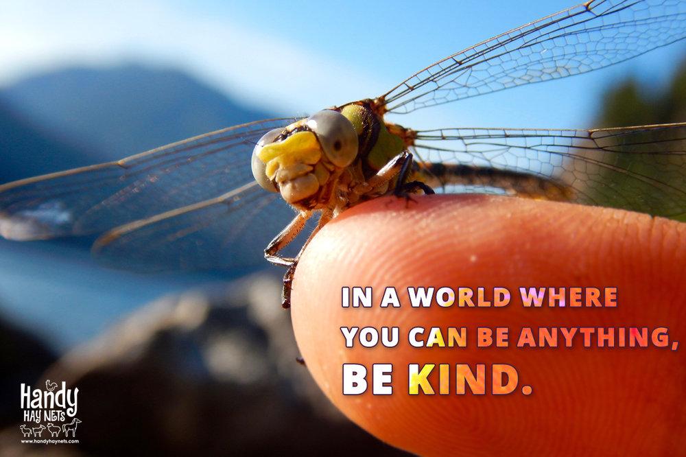be-kind.jpg