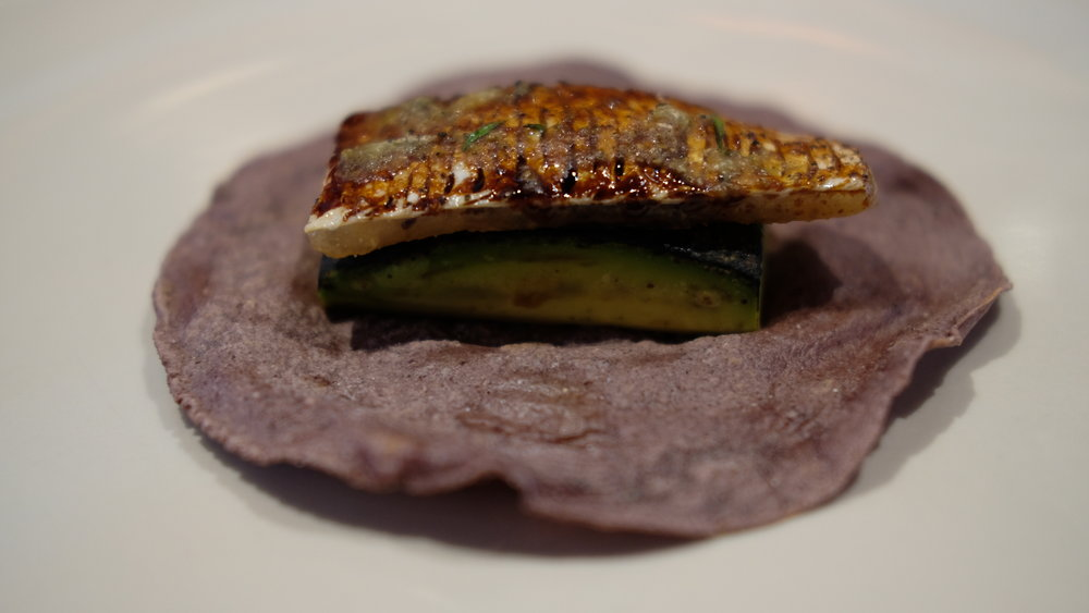Sea Bass belly with charred avocado and soy on a blue corn tortilla