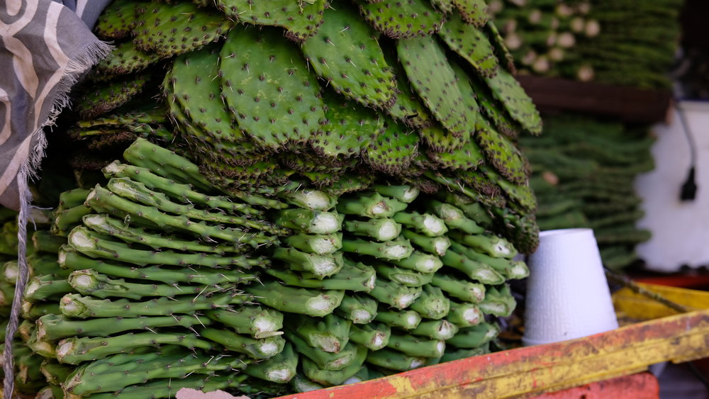 Nopales for sale.