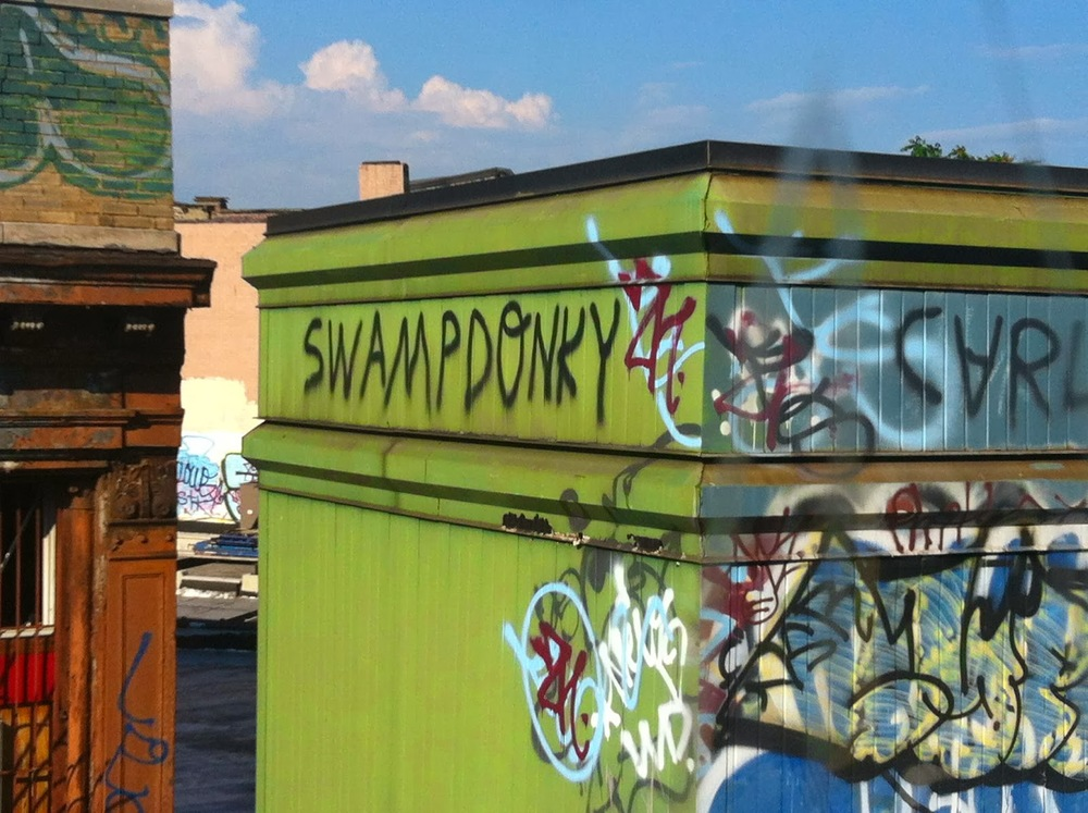 swamp+donky.jpg