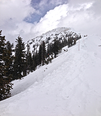 beginning of the Baldy hike- Snowbird 4/13