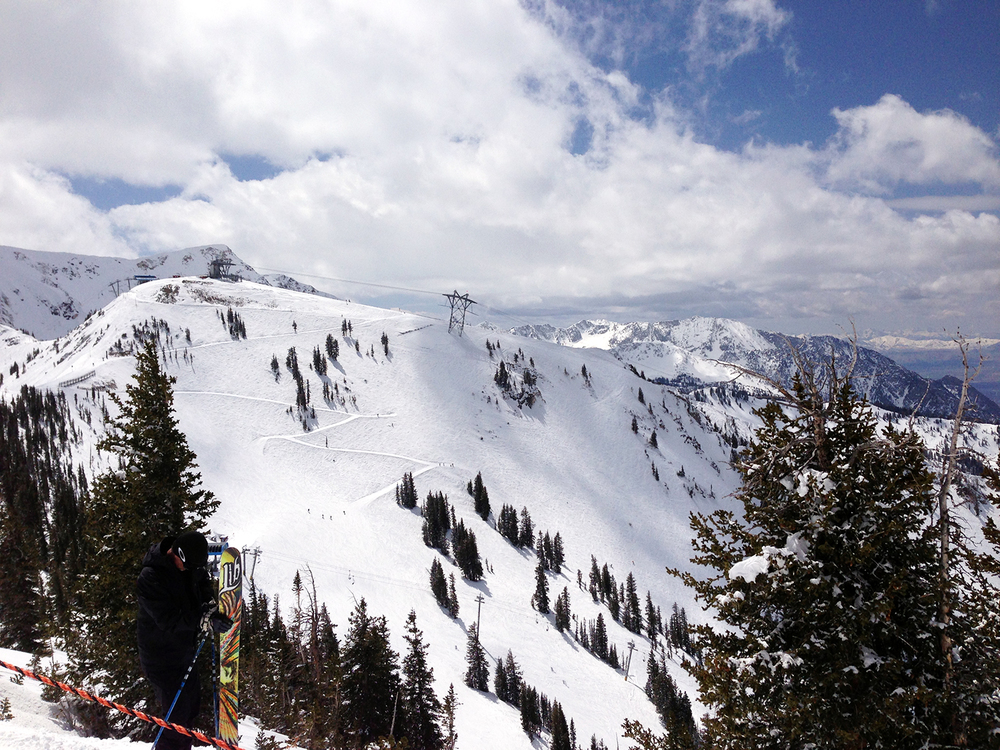 Snowbird from the hike up Baldy 4/13