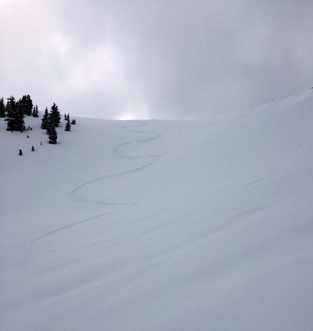 el squat's last tracks on the saddle off of Mary's Nipple on Targhee's last day 2015