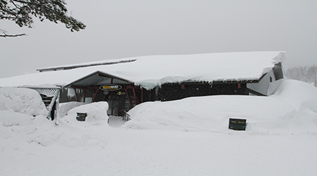 boreal 2 450 x 250.jpg