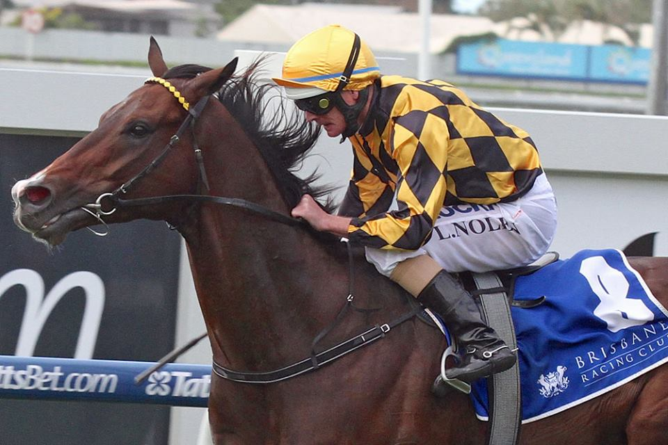 Havana and Luke Nolen take the Group Three Fred Bes Classic (1350m) at Doomben. Image: Dan Costello.