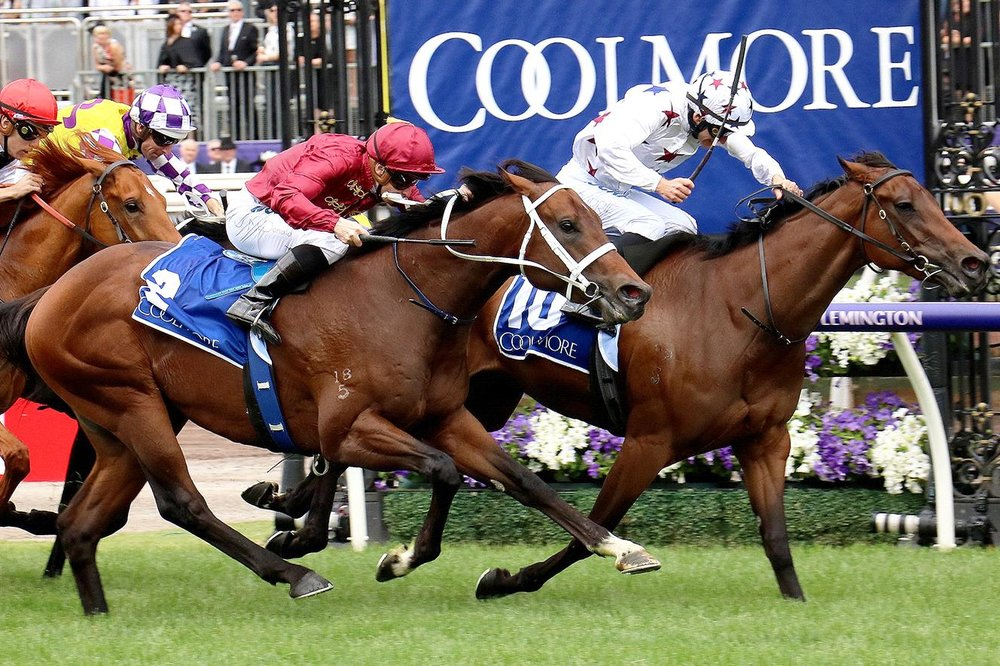 sunlight-triumphs---no-excuses-for-vanquished-colts-in-coolmore-stud-stakes.jpg