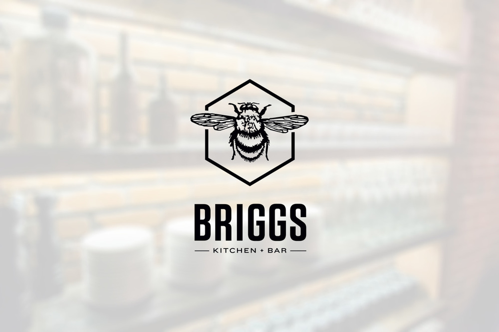 briggs_cover.jpg