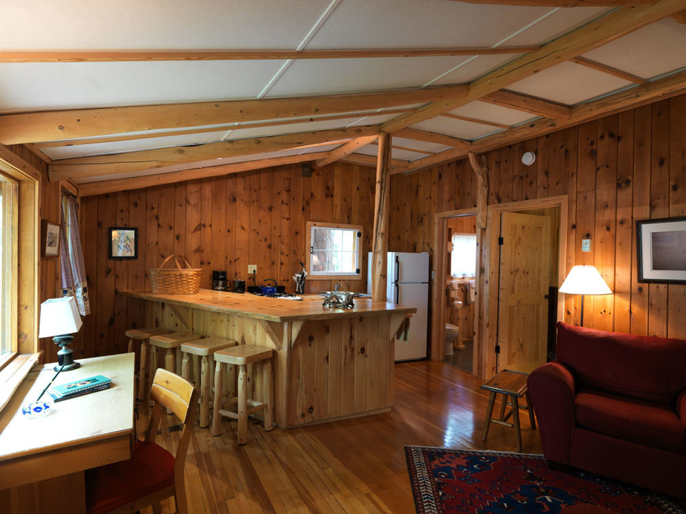 Cabin6_greatroom.jpg