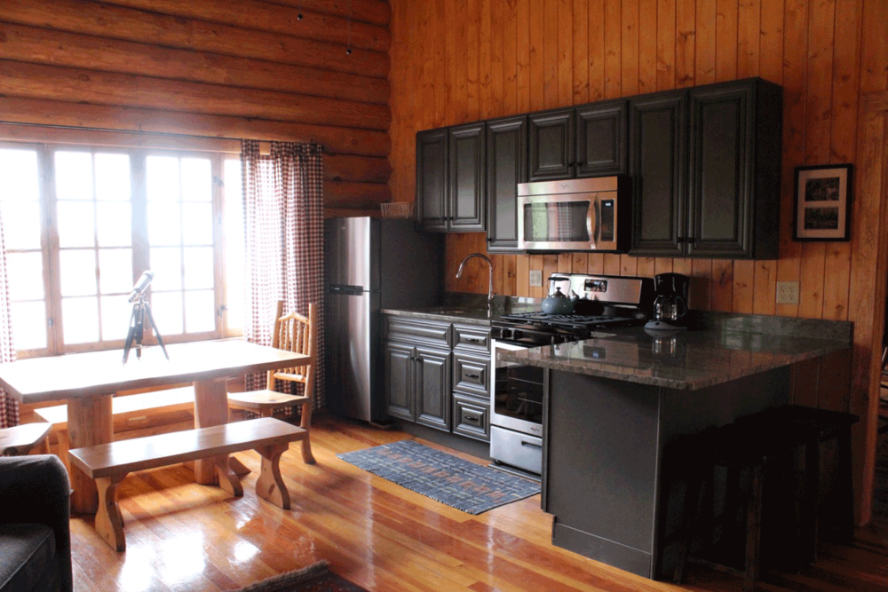Cabin25_kitchen_2015.png