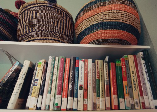 books on the shelf