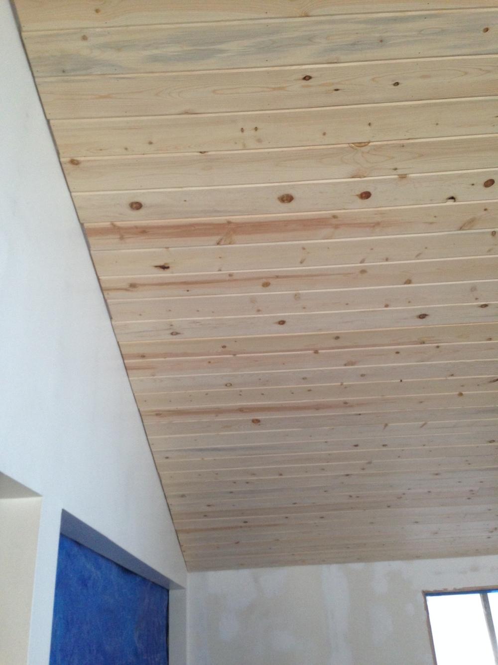 ceiling love.JPG