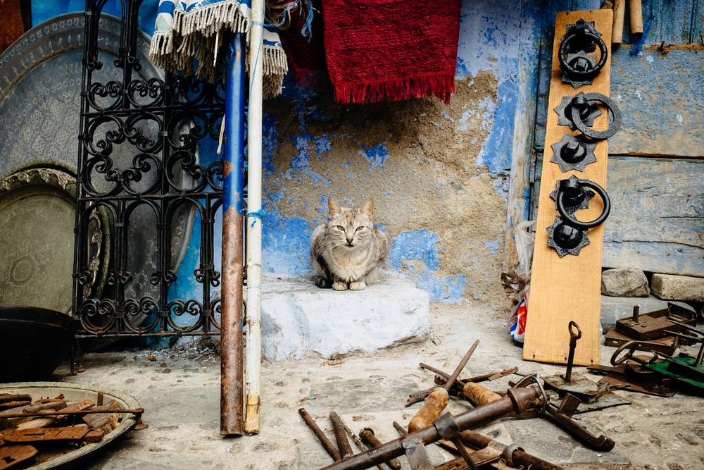 Maroc_Web-150.jpg