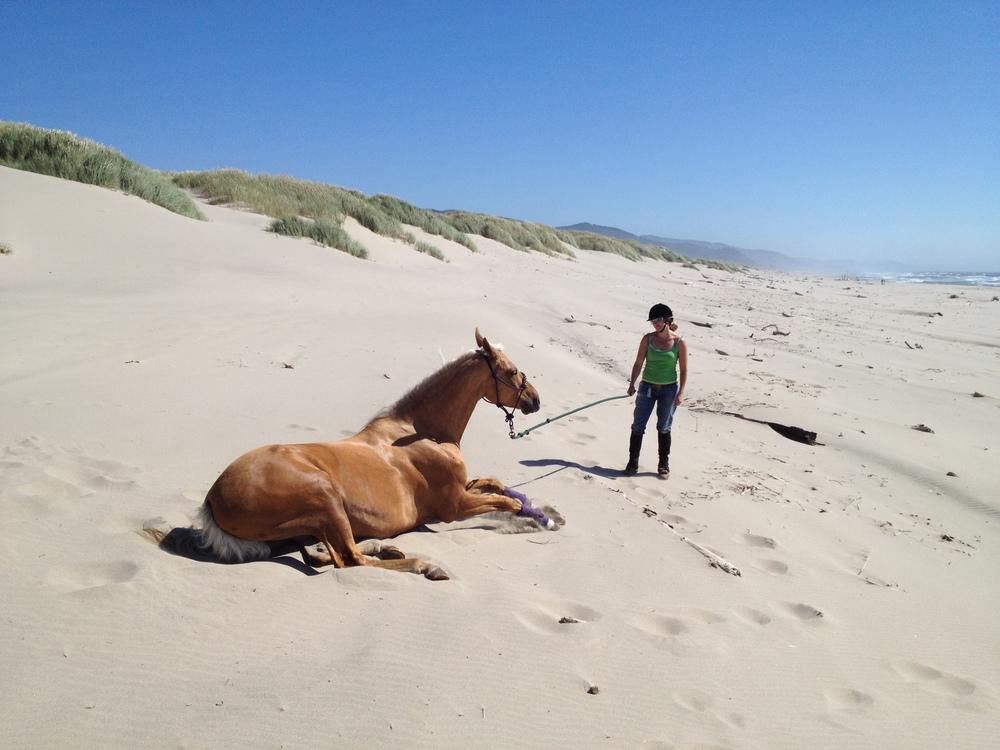 denay love horse.jpg