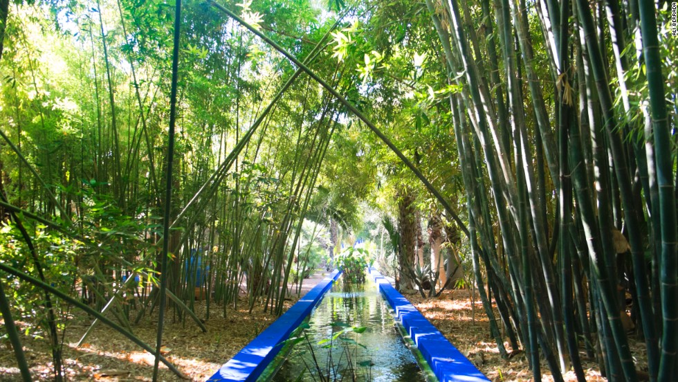 Bliss and mischief yves saint laurent and jardin majorelle for Jardin yves saint laurent maroc
