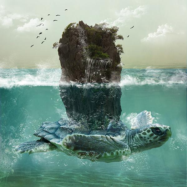 Turtle Island — Fariha Alhassen