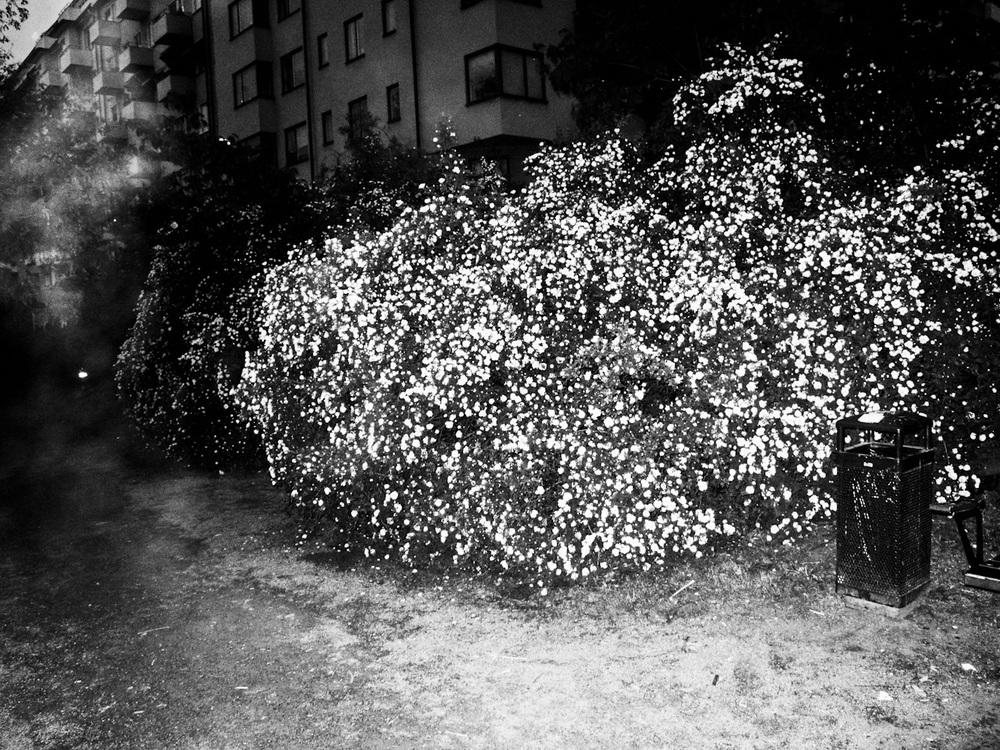 tukholma-3826.jpg