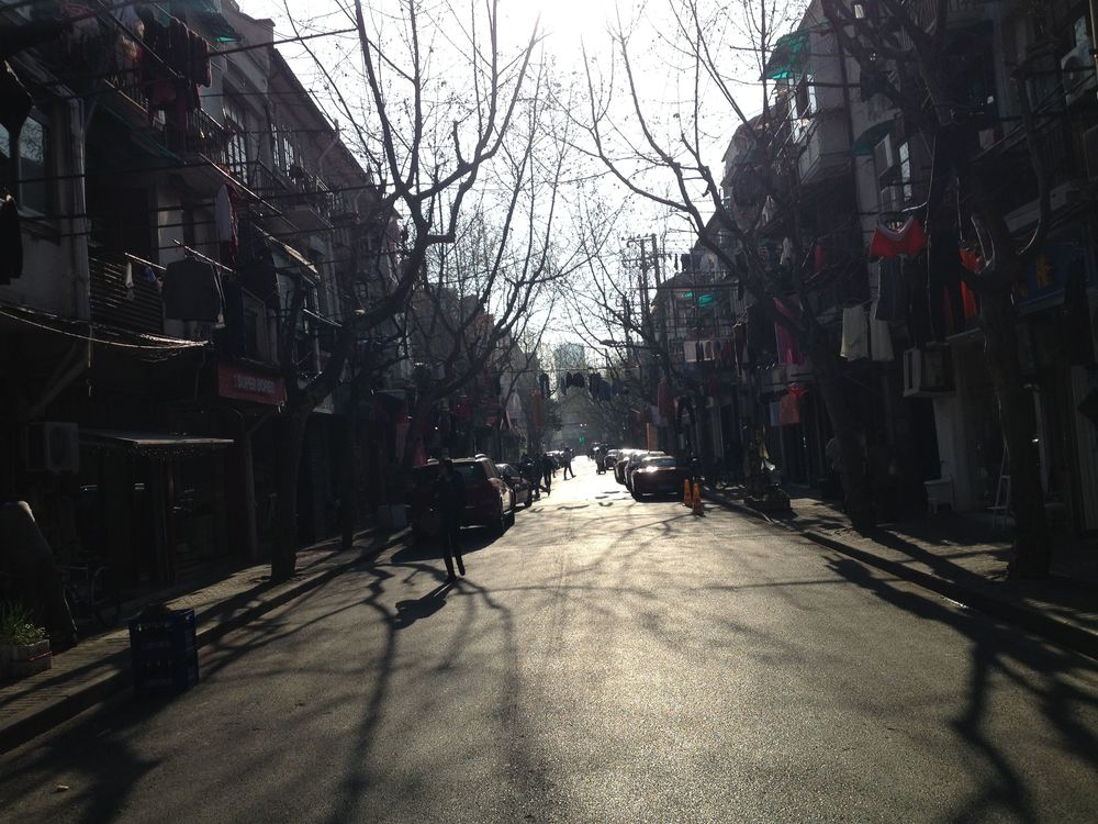 Most days I absolutely love biking the beautiful streets of the French Concession in Shanghai