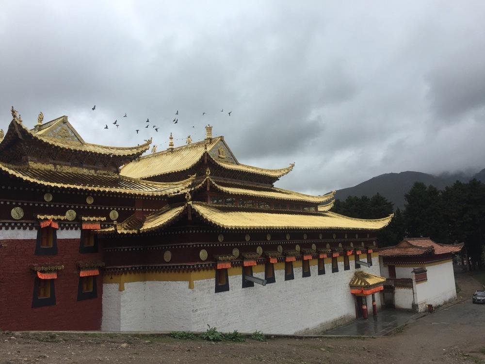 From Serti Gompa (Gansu Monastery)