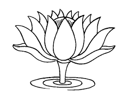 Yoga mudras inspiration the lotus flower as a symbol of light and the lotus flower has been used in buddhism hinduism and yoga for many years its a beautiful symbol of the cycles we go through in life as human beings mightylinksfo