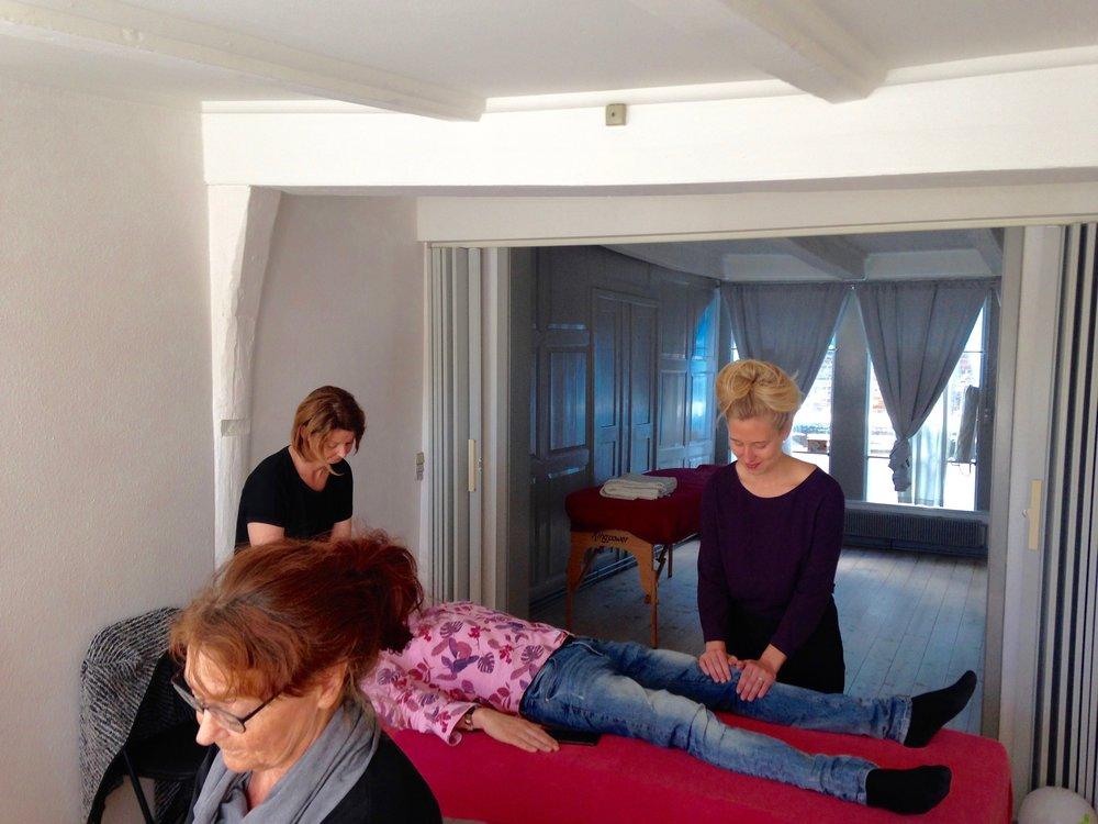 Behandling & Workshops