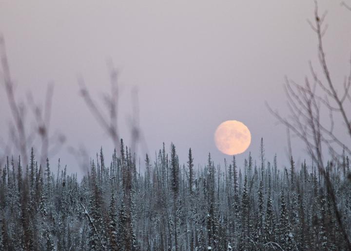 winter-full-moon_full_width.jpg