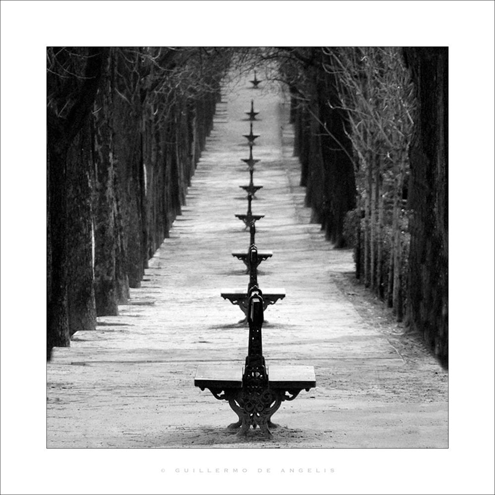 Avenida.jpg