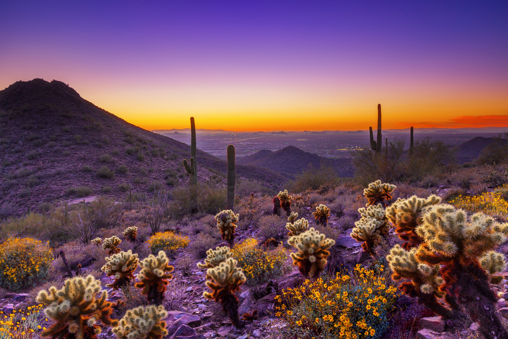 Photo courtesy of Scottsdale Convention & Visitors Bureau