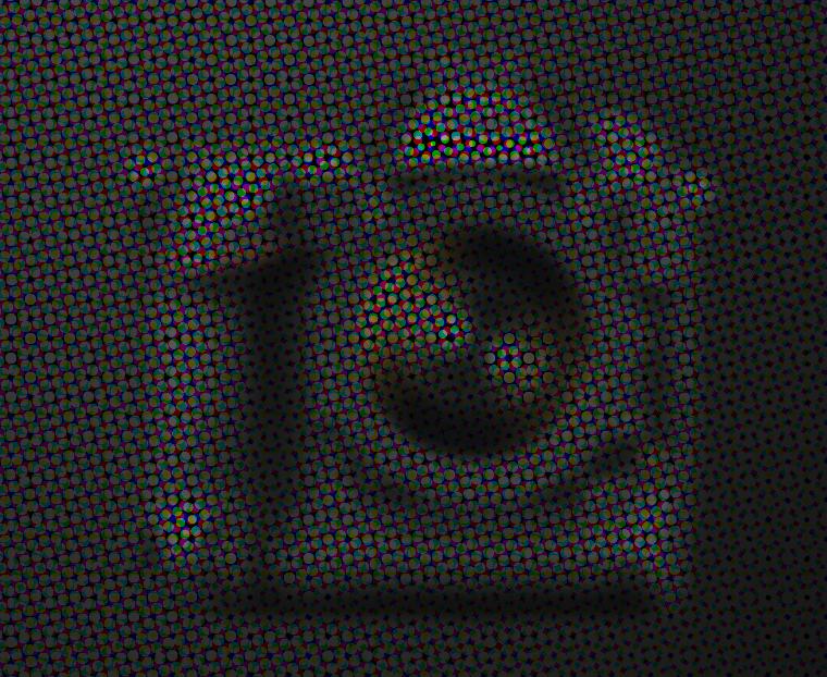 NIKON D5 Symbolfoto erstellt durch die FOTOCULT Redaktion!