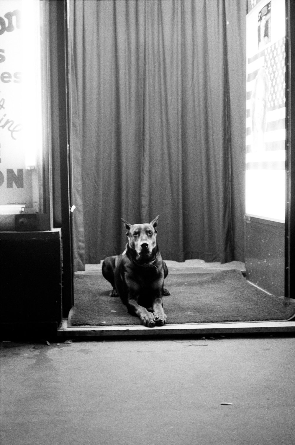 Wachhund am Eingang einer Peep-Show, Pigalle, Paris 1989 Watchdog in Front of a Peep-Show Entrance, Pigalle, Paris 1989, © Jörg Rubbert