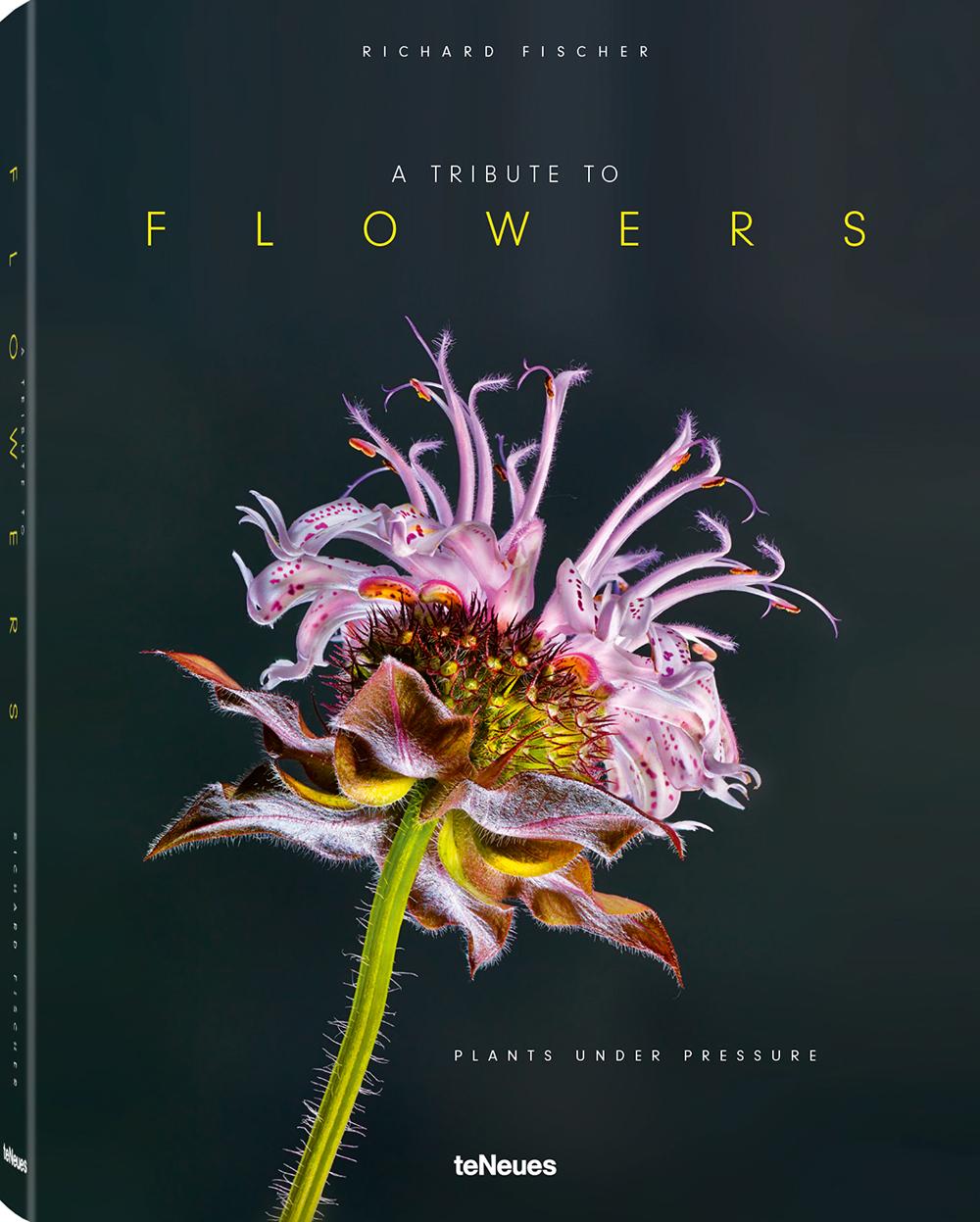 © A Tribute to Flowers - Plants under Pressure von Richard Fischer, erschienn bei teNeues, € 40,   www.teneues.com