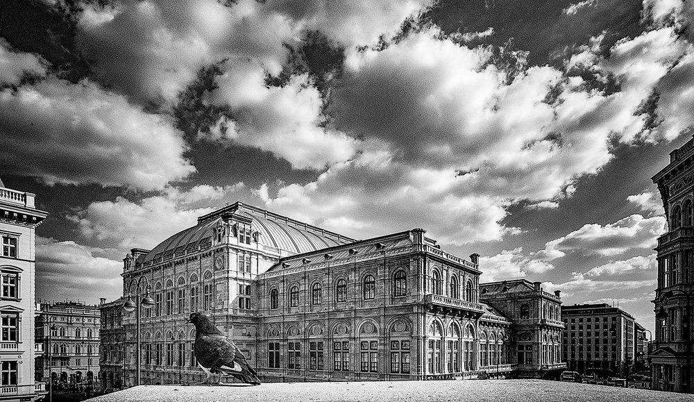 Sommer Fotofestival Wien, 9.7.-20.7.2018
