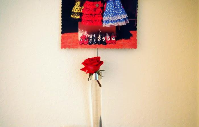 Rose+Spanien.jpg