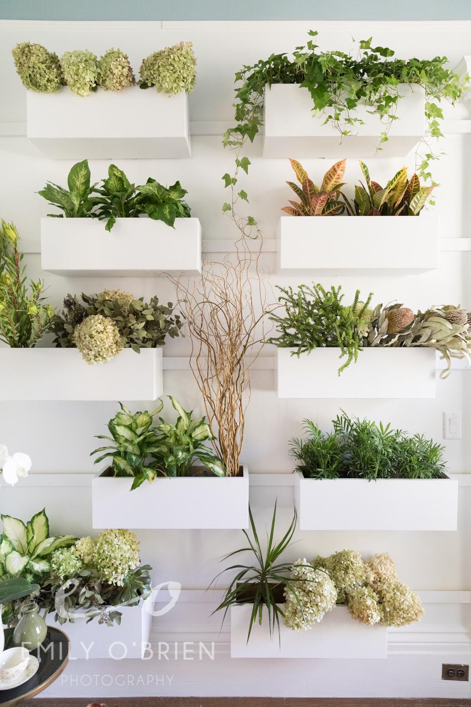 green-living-wall-greenhouse-plants.jpg