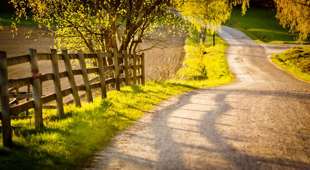Road to Happy Healthy Life