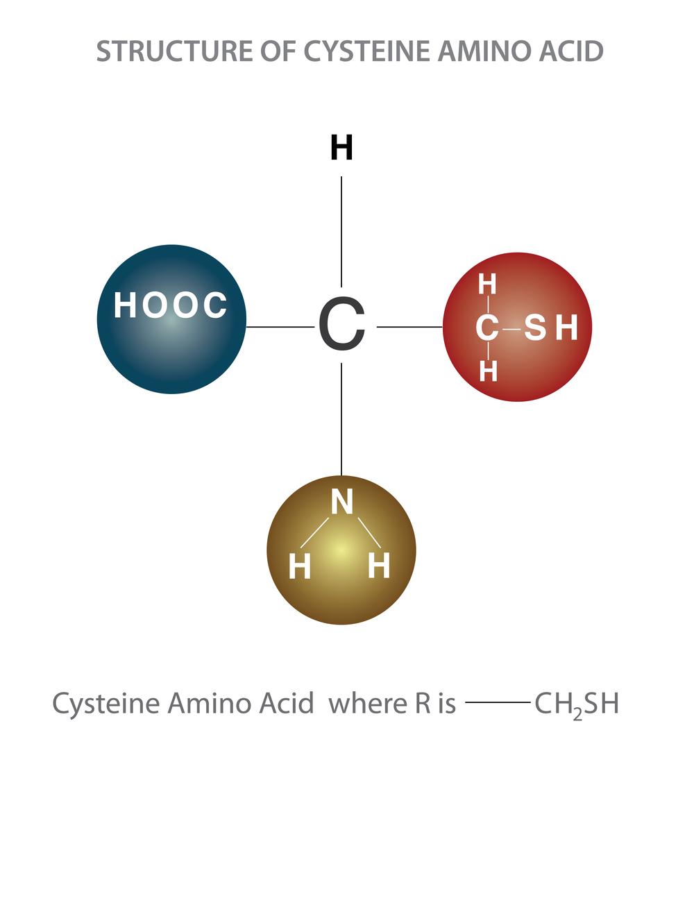 Structure of cysteine