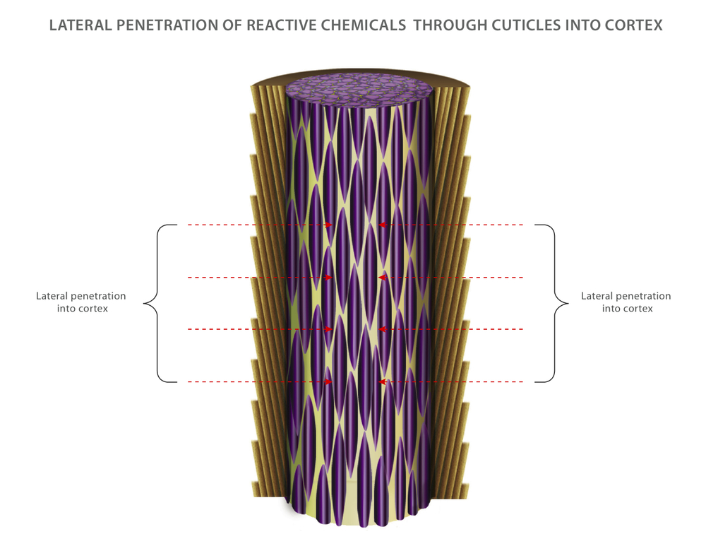 Lateral penetration of reactive chemicals