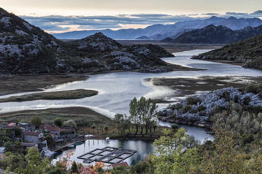 Montenegro Dawn
