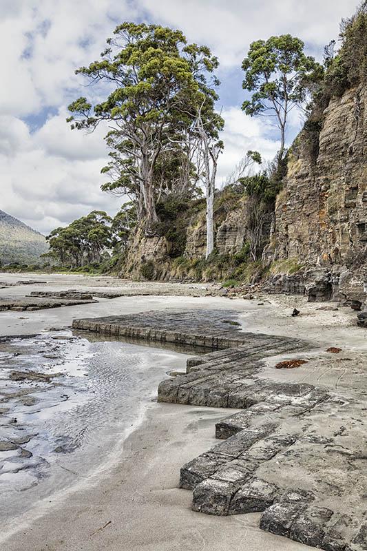 Tesselated Pavement Beach Tasmania
