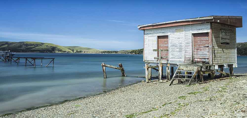 Catlins Coast S.I NZ
