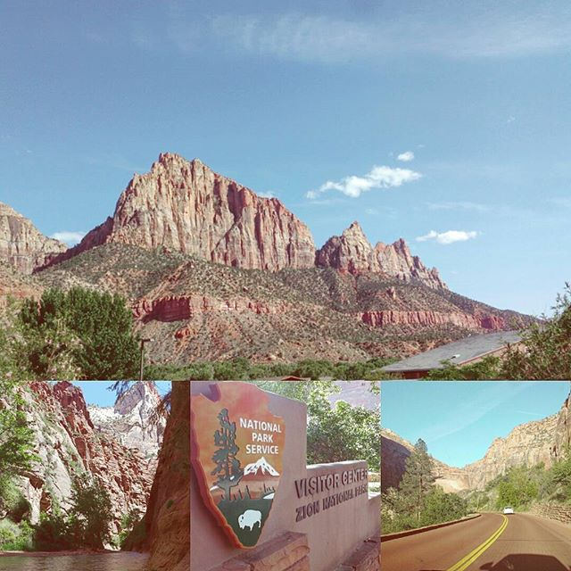Some final pictures from our last day in Zion